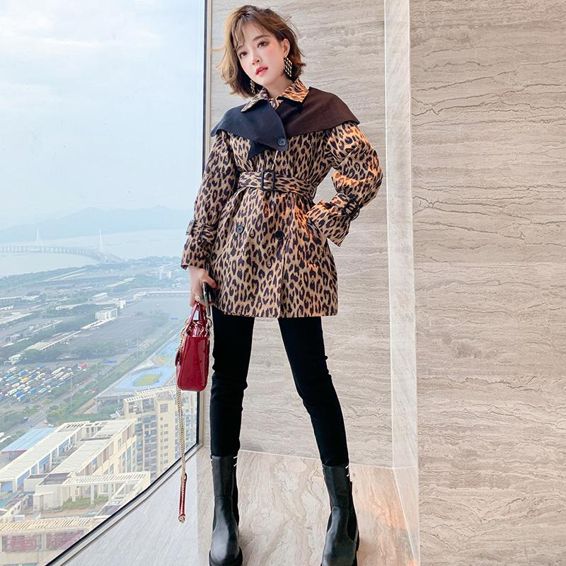 MIUCO豹纹印花可拆卸针织披肩翻领收腰风衣外套女装2020秋季新款-远豪服饰-