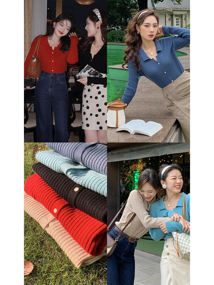 许大晴 复古进口100绵羊毛针织衫女秋季长袖修身简约polo领开衫